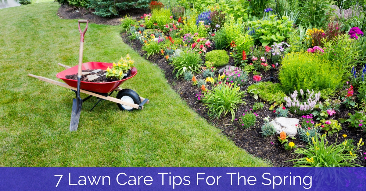 7 Lawn Care Tips For The Spring